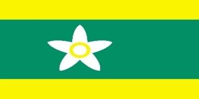 道旗:愛媛県